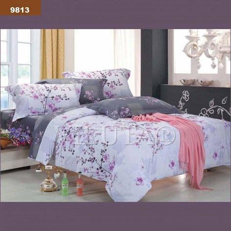 Комплект постельного белья двуспальный 175*210 ранфорс TM Viluta (9813), фото 2
