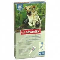 Advantix (Адвантикс) вес больше 25 кг