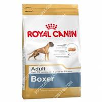 Royal Canin (Роял Канин) Boxer Adult 26