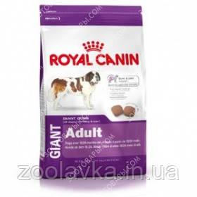 Royal Canin (Роял Канин) Giant Adult 15кг