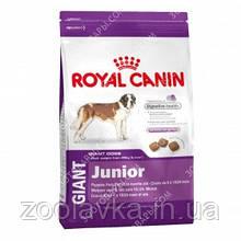Royal Canin (Роял Канин) Giant Junior 17кг