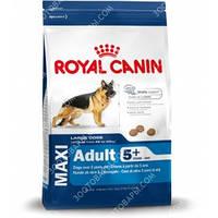 Royal Canin (Роял Канин) Maxi Adult 5+