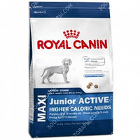 Royal Canin (Роял Канин) Maxi Junior Active 20кг
