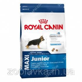 Royal Canin Junior Maxi Сухий корм для цуценят великих порід 4кг