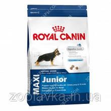 Royal Canin Maxi Junior Сухой корм для щенков крупных пород 4кг