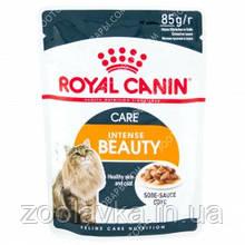 Royal Canin Intense Beauty (кусочки в соусе) Консервы для кошек Поддержания красоты шерсти