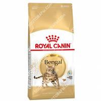 Royal Canin Bengal Adult Сухой корм для взрослых кошек породы Бенгальская