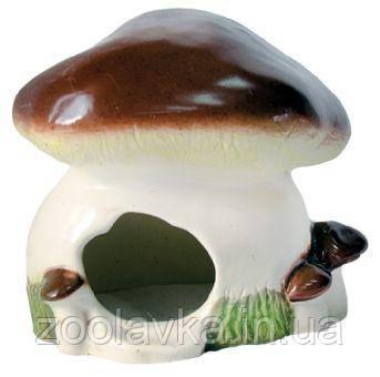 Будиночок - гриб Білий