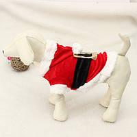 Животное щенок собаки Дед Мороз \ одежду толстовка пальто и пиджаки наряд