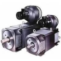 Электродвигатель постоянного тока MP132MG1 (18,5*1700/1700, 400/180)