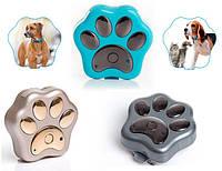 Gps ошейник для собак и кошек GPS-трекер iPet mini tkstar909 pet39