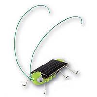 Образовательные солнечной энергии кузнечик игрушка-гаджет