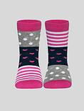 Носки детские TIP-TOP (весёлые ножки)  17С-10СП, р.18, 282 , хлопок 72%, фото 3