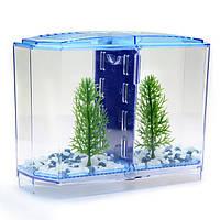 Bbt3 двойной бетта поклониться передний комплект аквариум