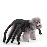 ОдеждадляпитомцевРождественскийHalloweenScared Black Widow Spider Harness Собака Костюм