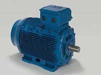 Асинхронный  двигатель на лапах 15кВт 1500 об/хв 380/660В