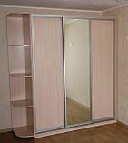 Шкаф-купе зеркало ДСП, фото 4