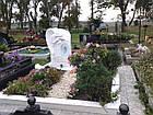 Памятник Ангел № 5, фото 4