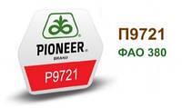 Семена кукурузы П9721, Пионер (P9721)
