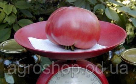 Томат Розовый гигант 500г
