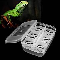 12 Рептилий Яйца Инкубатор Лоток Gecko Змея Птица Амфибии Вылупление Чехол Разведение Набор Коробка