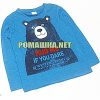 Детский реглан (футболка с длинным рукавом) р.110 для мальчика ткань 95% хлопок 5% вискоза 1073 Бирюзовый