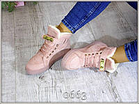 Ботинки Кеды женские зимние Замша Пудра