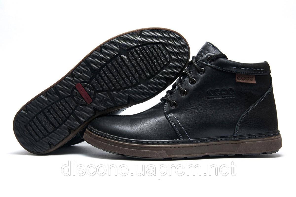 Зимние мужские кроссовки Ecco Biom 748bbe612725b