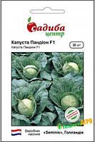 Семена капусты Пандион F1 (Голандия),20 шт