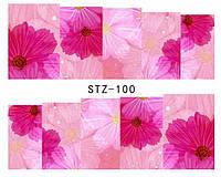Слайд для дизайна ногтей STZ-100