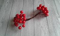 Калина глянцева (лакова) - червона