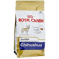Royal Canin (Роял Канин) CHIHUAHUA JUNIOR корм для щенков породы Чихуахуа, 500 г
