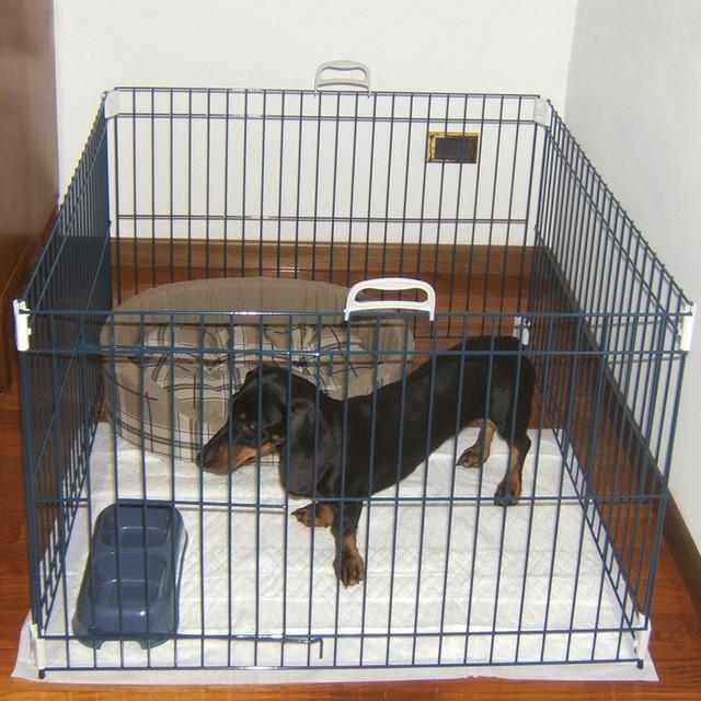 Ferplast Dog Training Вольер для собак и щенков