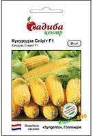 Семена кукурузы Спирит F1 (Голандия) , 20шт