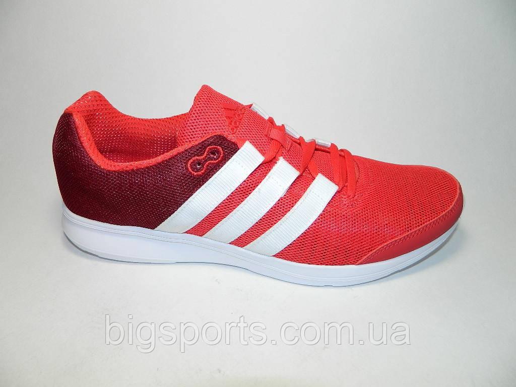 Кроссовки муж. Adidas Lite Runner M (арт. AQ5820) - BIGSPORTS в Днепре f88a67bcc1c