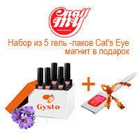 """Набор из 5 гель - лаков My Nail  """"Кошачий глаз"""" + магнит в подарок."""