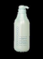 Шампунь глубокой очистки COCOCHOCO Pre treatment Clarifying shampoo 1л