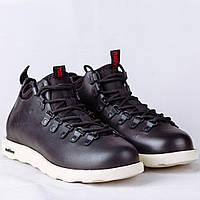 Ботинки Native Fitzsimmons  replica AAA