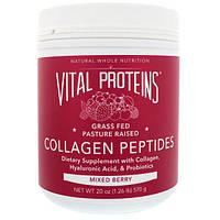 Vital Proteins, Пептиды коллагена, ягодная смесь, 20 унц. (570 г)