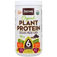 Jarrow Formulas, Organic Plant Protein, Chocolate Mocha Flavor, 16 oz (450 g)