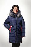 Женская куртка батал на холлофайбере Даша , фото 2