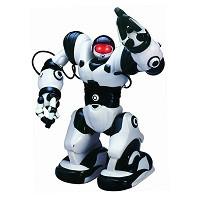 Роботы, роботы на радиоуправлении