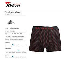 Мужские стрейчевые боксеры  Марка «INDENA» АРТ.65025, фото 3