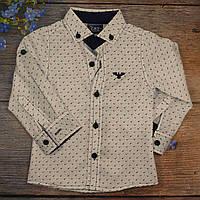 Рубашка для мальчика Размер: 9,10,11,12 лет (5841-1)