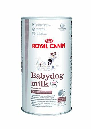 Royal Canin (Роял Канин) Babydog milk (БЕБИДОГ МИЛК) Полноценный заменитель молока для щенков  Заменитель сучьего молока с рождения до отъема (0-2 месяца).  Гармоничный рост  Для стабильного, гармоничного роста щенка, состав Babydog milk максимально приближен к составу молока суки, с высоким содержаниям белка и энергии.  Безопасность пищеварения  Особенно подходит для пищеварительной системы щенка, так как не содержит крахмал (у щенков не вырабатывается достаточно амилазы). Заменитель обеспечивает защиту пищеварительной системы благодаря использованию ультра-усваиваемых белков высочайшего качества, лактозы в необходимых количествах; содержит ФОС для поддержания баланса микрофлоры кишечника  Простота приготовления  Легкость приготовления: благодаря эксклюзивной формуле Babydog milk мгновенно растворяется в воде, не образуя комочков.  Обогащение ДГК  Формула BabydogMilk максимально приближена к молоку суки, высокое содержание ДГК способствует правильному развитию мозга щенка, нервной системы, познавательной функции.  Babydog milk набор содержит  4 пакета с заменителем молока, каждый по 100 г (упаковка с контролируемой атмосферой гарантирует сохранение свежести продукта) Градуированная бутылочка с широким горлышком, облегчающим ее мытье и приготовление пищи 3 соски разного размера и с разными отверстиями. Мерная ложка Заменитель молока  Упаковка: 400.0 г, 2.0 кг  Рекомендуемый суточный рацион указан в граммах (г/день) и мерных стаканах объемом 240 мл (ст/день).  Cвежая вода всегда должна быть в достаточном количестве.             Maxi (25-45 кг)   ВозрастКормлений в деньРазведенное молоко (мл) Порошковое молоко (в мерных ложках)   минмаксминмакс 1 неделя810255/101 + 3/10 2 неделя530701 + 5/103 + 5/10 3 неделя46012036 4 неделя4901704 + 5/108 + 5/10    Ингредиенты:Молочные протеины, животные жиры, протеины молочной сыворотки, соевое масло, кокосовое масло, рыбий жир (источник жирных кислот ДГК), минеральные вещества, фруктоолигосахариды.