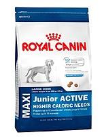 Корм Royal Canin (Роял Канин) MAXI JUNIOR ACTIVE для щенков крупных пород для активной жизни