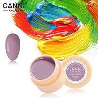 Гель-краска CANNI 558 лилово-серая