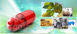Курс приема витаминов Nutricare США «Цикличность и Адаптация», очищение, восстановление, укрепление, омоложение организма для мужчин и женщин. Программа по  восстановлению здоровья