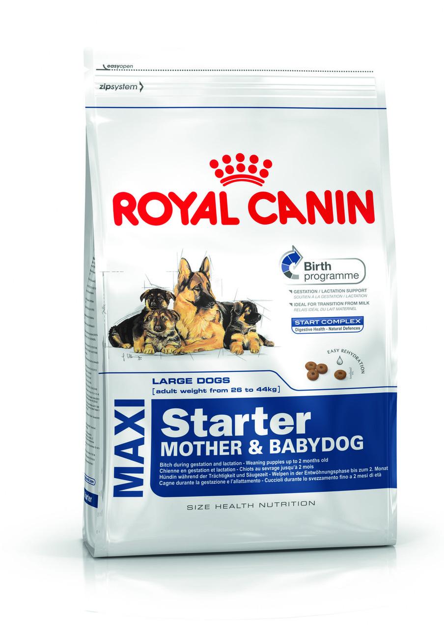 Сухой корм Royal Canin (Роял Канин) MAXI STARTER для щенков крупных пород (для беременных и кормящих сук), 4