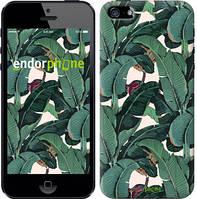 """Чехол на iPhone 5s Банановые листья """"3078c-21-8079"""""""